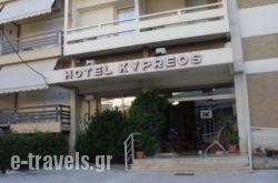 Kypreos in Athens, Attica, Central Greece