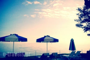 Maria Mare_lowest prices_in_Apartment_Ionian Islands_Zakinthos_Argasi