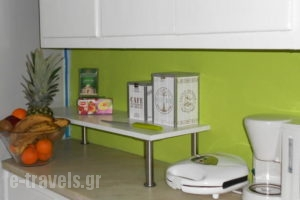 AthensColorful Urban Home_holidays_in_Room_Central Greece_Attica_Athens
