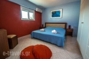 Playa Del Zante_best prices_in_Room_Ionian Islands_Zakinthos_Alykes