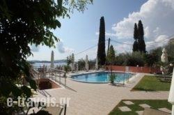 Oasis in Athens, Attica, Central Greece