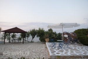 Alisaxni Studios_best deals_Apartment_Ionian Islands_Zakinthos_Argasi