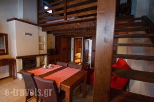 Chalet Christantoni_holidays_in_Room_Thessaly_Trikala_Elati