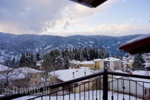 Chalet Christantoni_accommodation_in_Room_Thessaly_Trikala_Elati