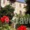 Guesthouse Parthenon